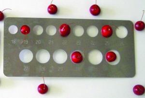 Calibre à plaque pour petits fruits