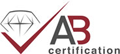 Allcat instrument ISO9001:2015 Certified Certificate #A529