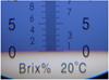 Recommandations pour l'utilisation d'un réfractomètre